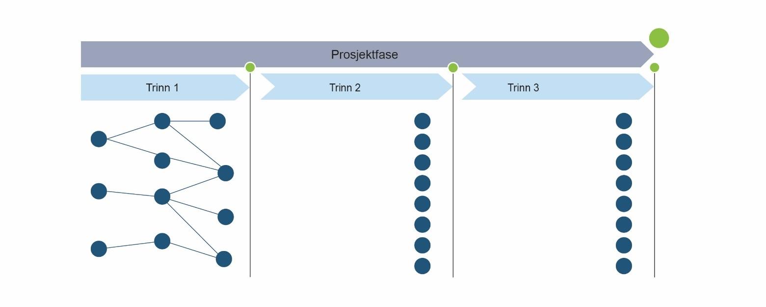 prosjektfase trinn
